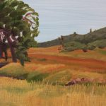 Fields, San Lucas, CA