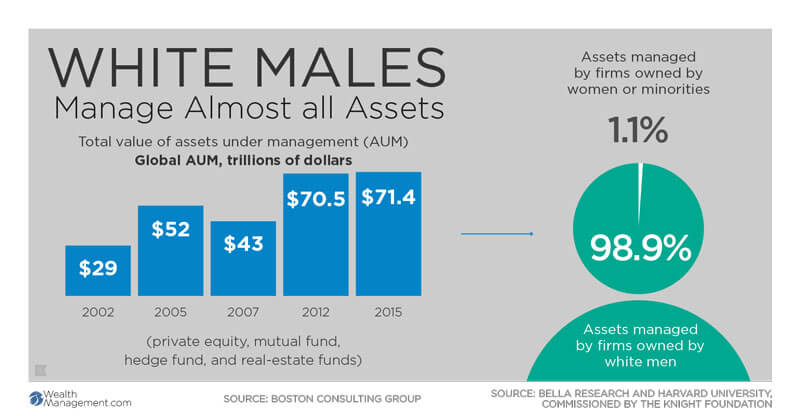 wealth management diversity in financial advice industry infographic